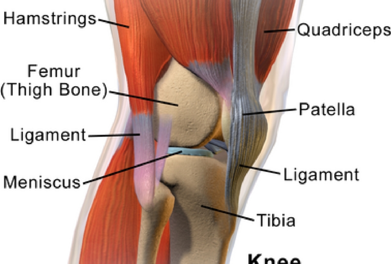 knee conditions, knee replacement surgery,minimally invasive surgery ...